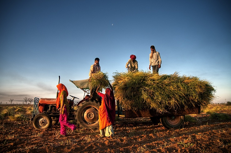 essay on use of internet for farmers in india